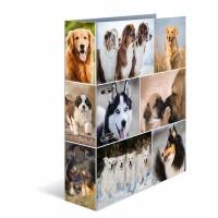 Classeur à levier HERMA « Dogs » – A4 Dos de 7 cm