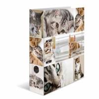 Classeur à levier HERMA « Cats » – A4 Dos de 7 cm