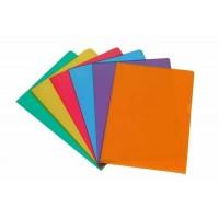Pochette de 10 protèges documents Aurora colorés